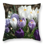 Glorious Spring Throw Pillow