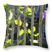 Glory Named Helix Throw Pillow
