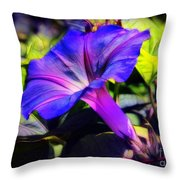Glory Of The Morning Throw Pillow