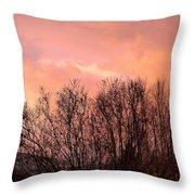 Glow Of A Winter Sunset Throw Pillow
