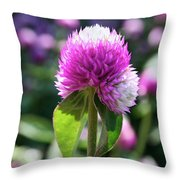 Glowing Globe Amaranth Throw Pillow