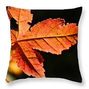 Glowing Gold Throw Pillow