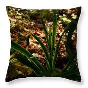 Glowing Iris Plant 3 Throw Pillow