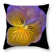 Glowing Peony Throw Pillow