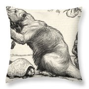 Glyptodon And Megatherium, Extinct Fauna Throw Pillow