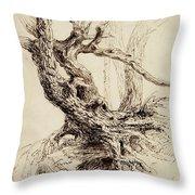 Gnarled Tree Trunk Throw Pillow