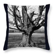 Gnarly 2154 Throw Pillow