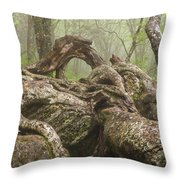 Gnarly Old Tree In Fog Along The Blue Ridge Parkway Throw Pillow by Bill Swindaman