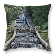 Gnoll Country Estate Throw Pillow