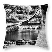 Gnoll Country Park 4 Mono Throw Pillow