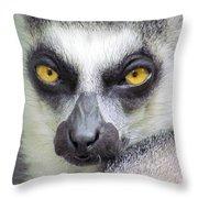 Go Ahead--make My Day Throw Pillow