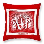Go Go Badgers Throw Pillow