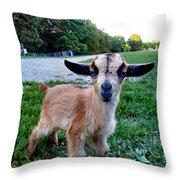 Goatee Throw Pillow