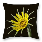 Goatsbeard Throw Pillow