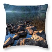 Going For A Swim Throw Pillow