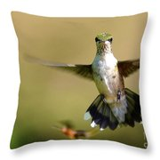 Going My Way Throw Pillow