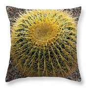 Gold Barrel Cactus   No 1 Throw Pillow