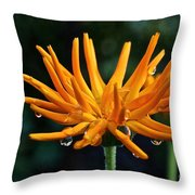 Gold Fingers Throw Pillow
