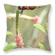 Gold In The Marsh Throw Pillow