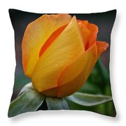 Gold Medal Bud Throw Pillow