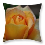 Gold Medal Grand Opening Throw Pillow
