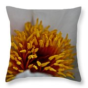 Gold Stamen Throw Pillow
