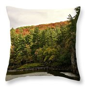 Gold Trimmed Trees Throw Pillow