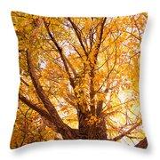 Golden Autumn View Throw Pillow