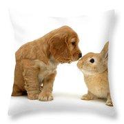 Golden Cocker Spaniel And Rabbit Throw Pillow