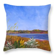Golden Delaware River Throw Pillow