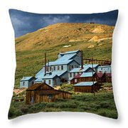 Golden Dreams Throw Pillow