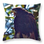 Golden Eagle II Throw Pillow