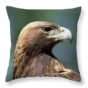 Golden Eagle In Profile Throw Pillow