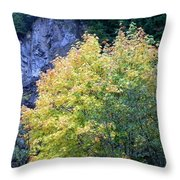 Golden Fall Throw Pillow
