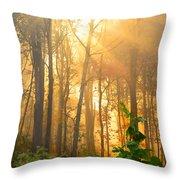Golden Fog Thru The Trees Throw Pillow