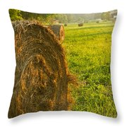 Golden Hay Field Throw Pillow