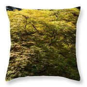 Golden Japanese Maple Throw Pillow