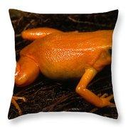 Golden Mantella Throw Pillow