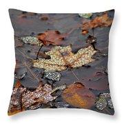 Golden Maple Dew Drops Throw Pillow