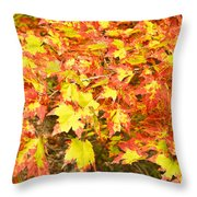 Golden Maple Leaves Throw Pillow