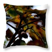 Golden Oak At Nightfall Throw Pillow