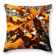 Golden Oak Shadows Throw Pillow