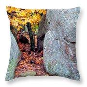Golden Oak Through Boulders At Elephant Rocks State Park Throw Pillow