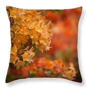 Golden Orange Radiance Throw Pillow