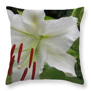 Golden Rayed  Lily Throw Pillow