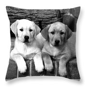 Golden Retriever Pups Throw Pillow