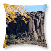 Golden Ribs Throw Pillow