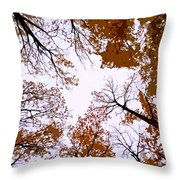 Golden September ... Throw Pillow