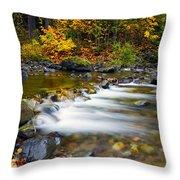 Golden Shores Throw Pillow