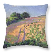 Golden Summer Throw Pillow